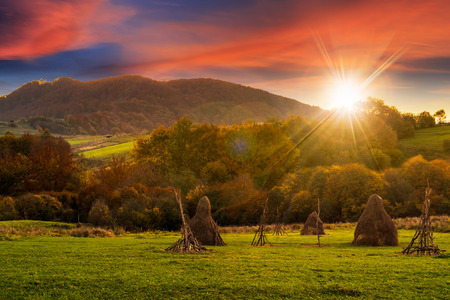 flare stack: composite agriculture landscape with stack of hay on a green meadow near forest near the foot of the mountain in sunset light