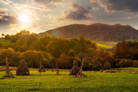 composite agriculture landscape with stack of hay on a green meadow near forest near the foot of the mountain in sunset light
