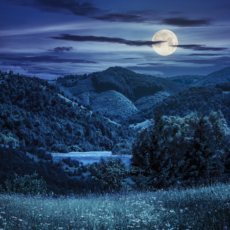 composite mountain summer landscape. pine trees on hillside meadow with wild flowers near the river in mountains at night in full moon light photo