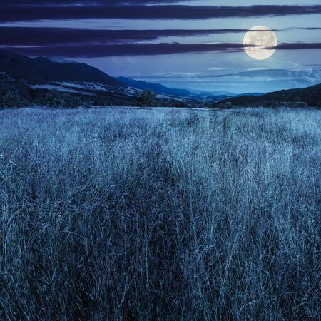 fantasy landscape: composite mountain summer landscape. Meadow with wild flowers in mountains at night in full moon light Stock Photo