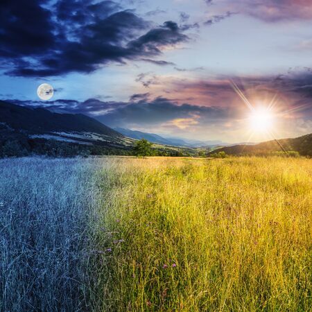 day and night collage of composite mountain summer landscape. Meadow with wild flowers in mountains Archivio Fotografico