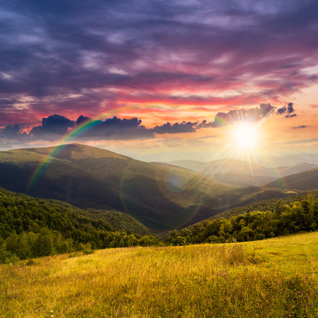 composite mountain summer landscape. trees near meadow on hillside in sunset light with rainbow