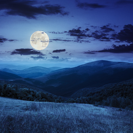 composite mountain summer landscape. trees near meadow on hillside at night in full moon light 免版税图像