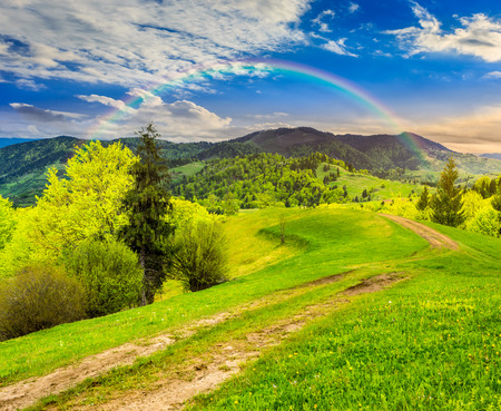 composite mountain landscape with  road on hillside meadow few fir trees and forest  on both sides of the road in morning light with rainbow photo