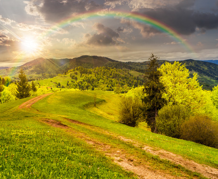 composite mountain landscape with  road on hillside meadow few fir trees and forest  on both sides of the road in sunset light with rainbow photo