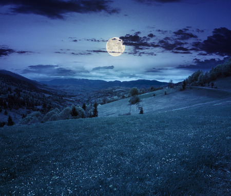 moon flower: village in mountains behind the agricultural meadow with flowers on  hillside at night in full moon light