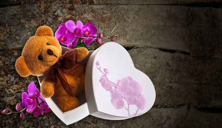 brown toy bear in white heart box with purple orchid flower on old wooden background