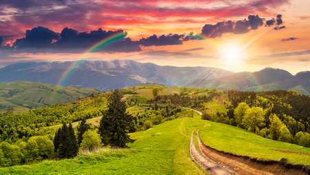 composite mountain landscape. pine trees by the road through meadow on hillside in sunset light with rainbow