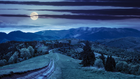 composite mountain landscape. pine trees by the road through meadow on hillside at night in full moon light Stok Fotoğraf