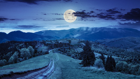 composite mountain landscape. pine trees by the road through meadow on hillside at night in full moon light 免版税图像