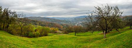 Green hillside of an apple orchard near the mountain village Stock Photo