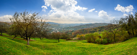 Green hillside of an apple orchard near the mountain village in morning light