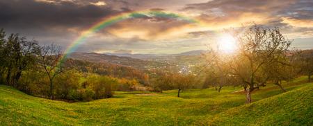 Green hillside of an apple orchard near the mountain village in sunset light with rainbow