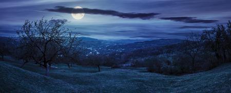 Green hillside of an apple orchard near the mountain village at night in full moon light Stock Photo