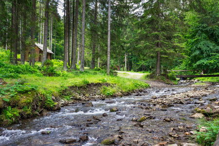 bridge through the river with stones and moss in the forest with some wooden bowers Stock Photo