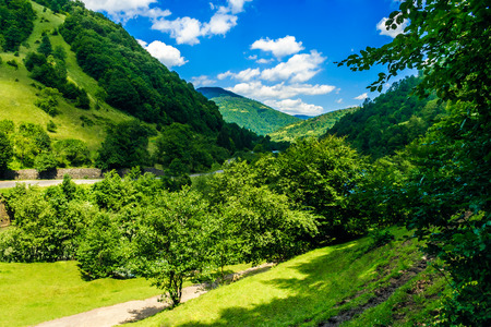 asphalt road going in mountains and passes through the green forest in shade of clouds Stock Photo