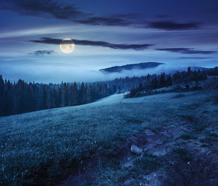 summer landscape. fog from conifer forest surrounds the mountain top at night in full moon light Stockfoto