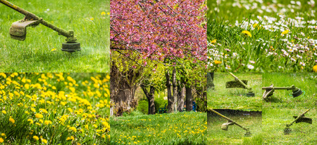 collage images work in garden and dandelion and chamomile lawn with  gasoline trimmer cutting fresh green grass