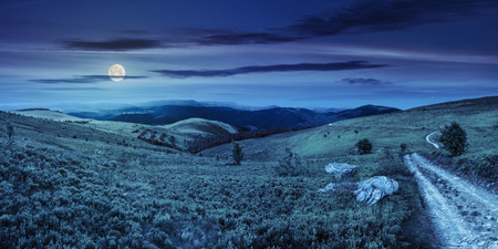 composite image of panoramic mountain landscape.  winding road on hillside meadow few stones and trees along the road. conifer forest far away on mountains at night in full moon light