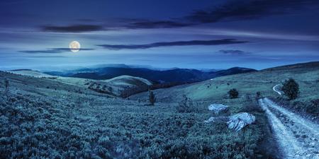 noche y luna: imagen compuesta de panorámica paisaje de montaña. sinuoso camino en la ladera prado pocas piedras y árboles a lo largo de la carretera. bosque de coníferas muy lejos en las montañas de la noche a la luz de la luna llena