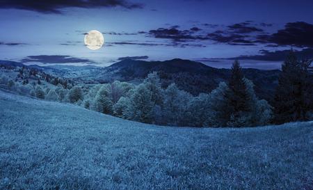 農村の風景です。草原と丘の上の木。満月の光で夜の山の上に霧の森
