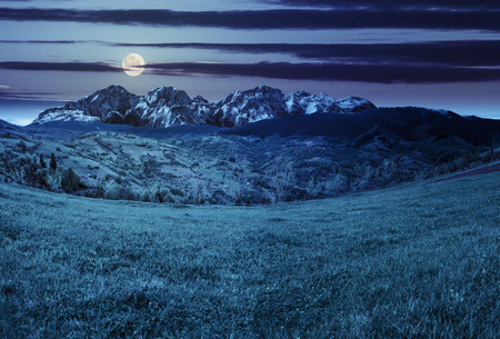 composite summer landscape with 3D mountains. village on agricultural meadow hillside in front of a high rocky mountain range at night in full moon light Stock Photo