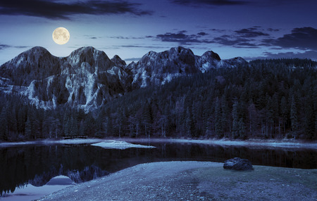 composite landscape with CGI elements. lake with boulder on the shore near the pine forest in mountains with 3D stone peaks at night in full moon light