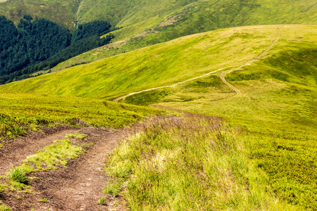 hillside path trough the  meadow in mountains Stock Photo