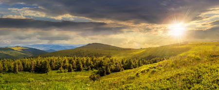 composite image of mountain range with coniferous forest and meadow on  hillside in sunset light