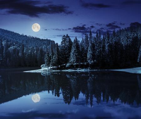 満月の光で夜の山の松の森の近くの湖