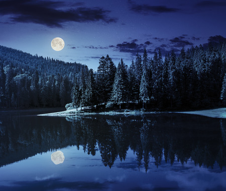 lake near the pine forest in mountains at night in full moon light Banque d'images