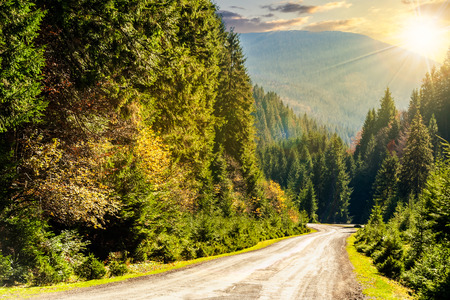 going in: asphalt road going in mountains and passes through the conifer forest in evening light Stock Photo