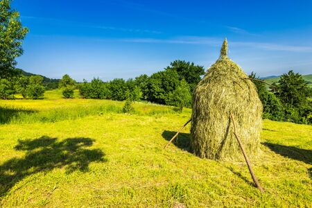 landscape with haystack  on a green meadow in the mountains Stock Photo