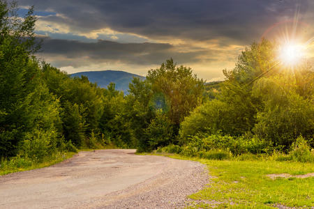 asphalt road going in mountains and passes through the green forest in shade of clouds in evening light Stock Photo