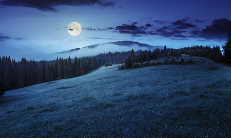 夏のパノラマ風景。針葉樹林から霧が満月の光で夜に山の頂上を囲む