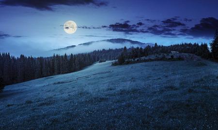 Paysage panoramique d'été. le brouillard de la forêt de conifères entoure le sommet de la montagne la nuit à la lumière de la pleine lune Banque d'images - 41427056