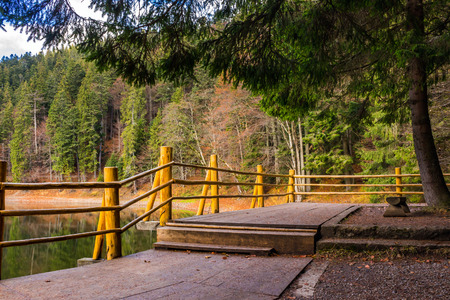 pier on the Lake in mountain near coniferous forest Stock Photo - 41855422