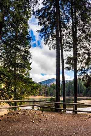 pier on the Lake in mountain near coniferous forest Stock Photo - 42152544