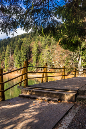 pier on the Lake in mountain near coniferous forest