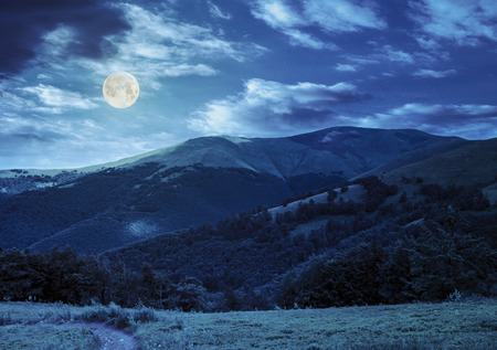 going in: foot path going in mountains and passes through the green forest at night in full moon light Stock Photo