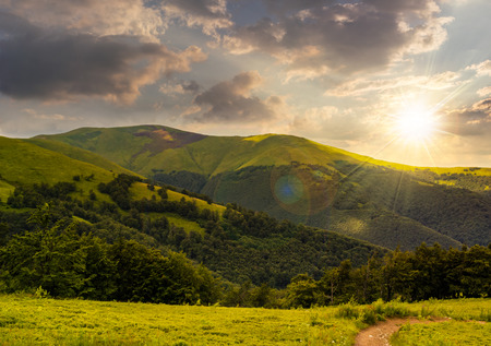 going in: foot path going in mountains and passes through the green forest in evening light Stock Photo