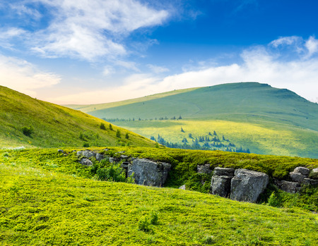 horison: view on high mountain peak from hillside covered with white boulders and conifer trees among green grass in morning light Stock Photo