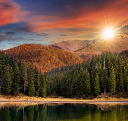 forest park: lake near the pine forest in orange autumn mountains in evening light Stock Photo
