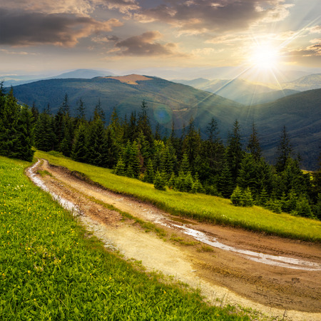 composite landscape with empty road to coniferous forest through the grassy hillside meadow on high mountain range in evening light Stock Photo