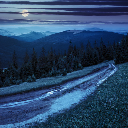 composite landscape with empty road to coniferous forest through the grassy hillside meadow on high mountain range at night in full moon light