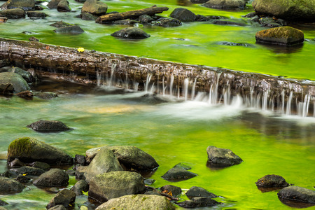small cascade made from fallen tree on the clean little stream with stones in green forest Stock Photo