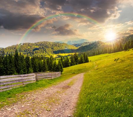 夕暮れ時の山に人工林の山腹を上る草原の小道に近い虹の下柵複合景観