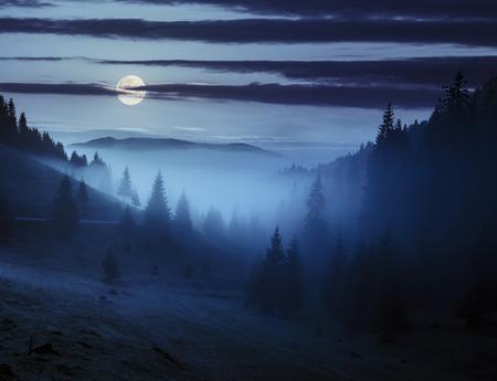 sonne mond und sterne: Anfang Herbst Landschaft. Nebel vom Nadelwald umschließt die Berggipfel in der Nacht im Vollmondlicht Lizenzfreie Bilder