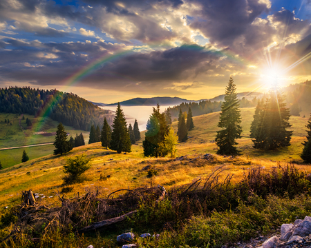 hillside with coniferous forest among the fog on a meadow under the rainbow  in mountains of Romania in evening light Stockfoto