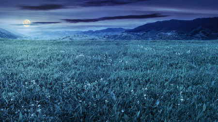 rural landscape. fresh grass on the flat meadow near the high mountains at night in full moon light Stock Photo